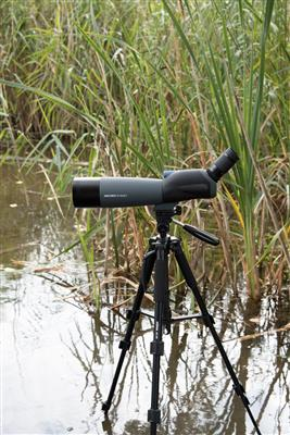 Zoom Spotting Scope Rain Forest 20-60x80 A